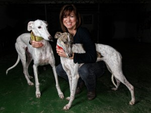 Los Galgos, Greyhounds Aid Centre