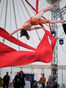 Emily & Regis Wedding Party, acrobat