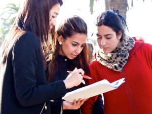 Harvard Business School, Casablanca